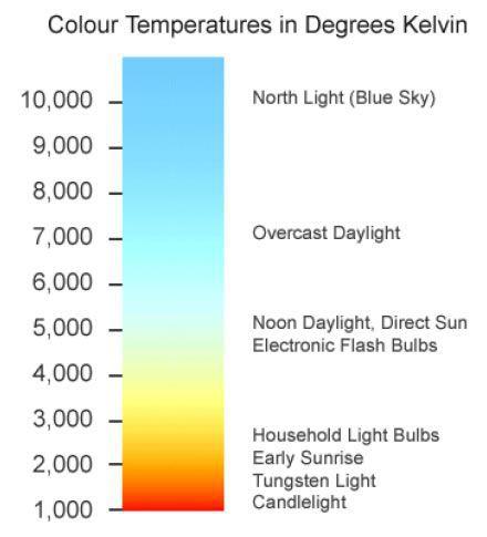 Colour Scale.jpg