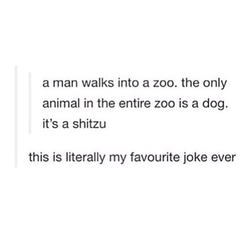 zoo_n.jpg